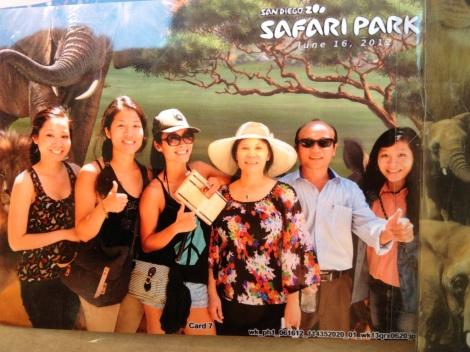 Wild Animal Zoo